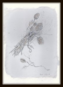 #459 silverpoint dry flowers