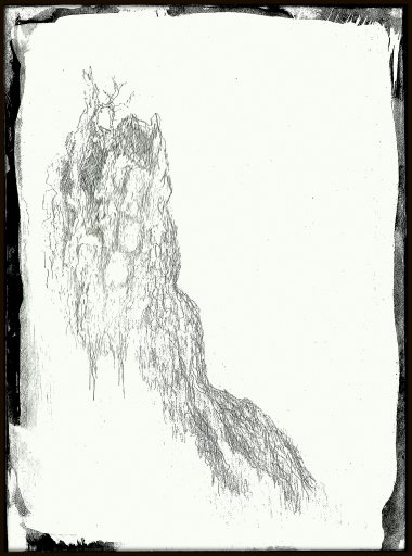 #496 silverpoint tree stump