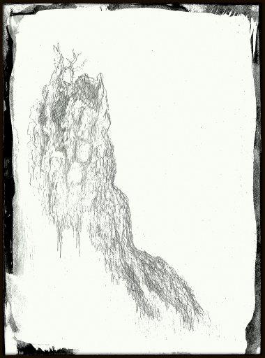 #496 silverpoint tree stump