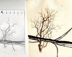 #819 sketches.jpg